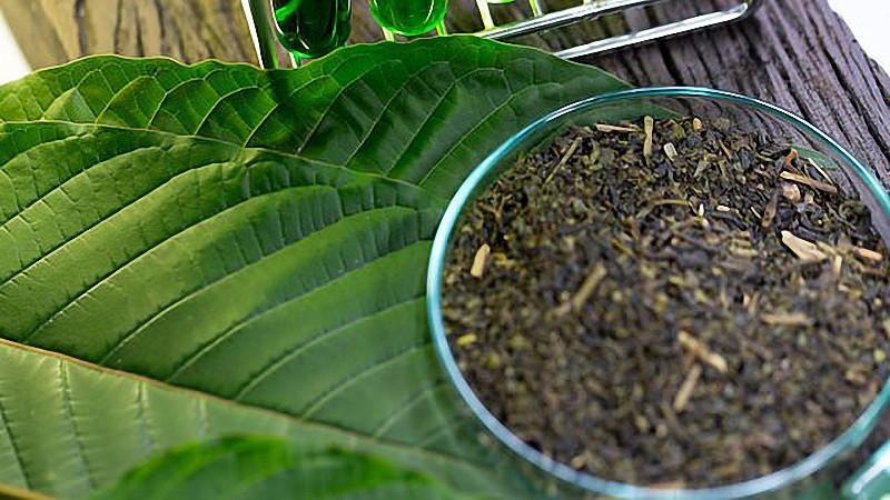 They Are Requested Three Questions Concerning Kratom Programs